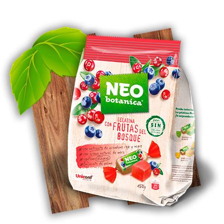 gelatina-con-frutas-del-busque